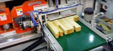 Автоматическая линияторцевого сращивания FL 08S / FL 18 2