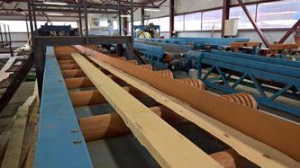 Чем полезна встреча со специалистами Timber Solutions?